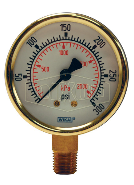 Brass Standard Dry Gauge